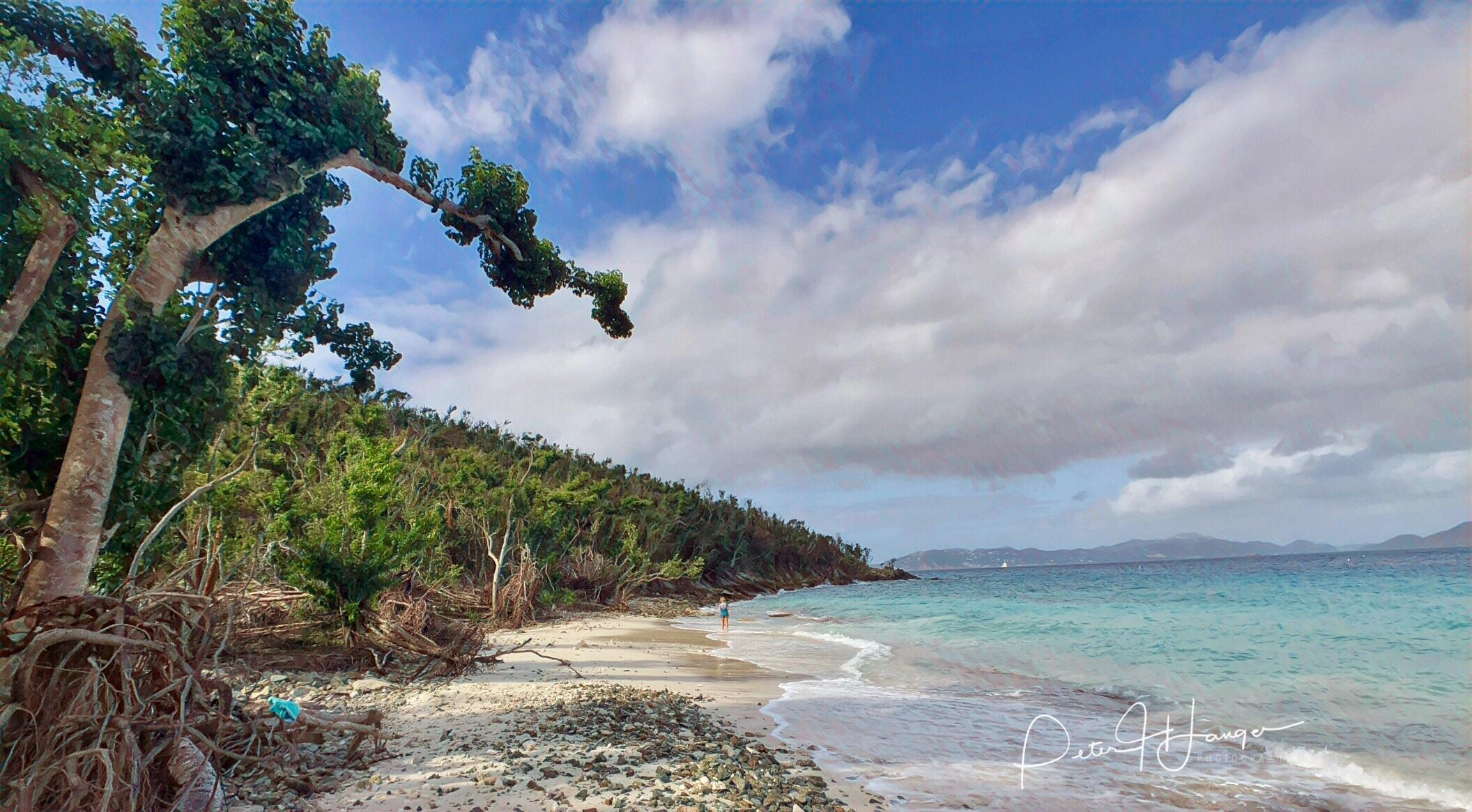 Solomon Beach Update Vacation Soup