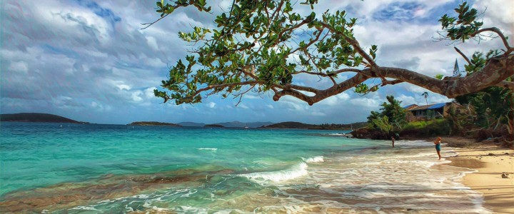 Solomon Beach Update