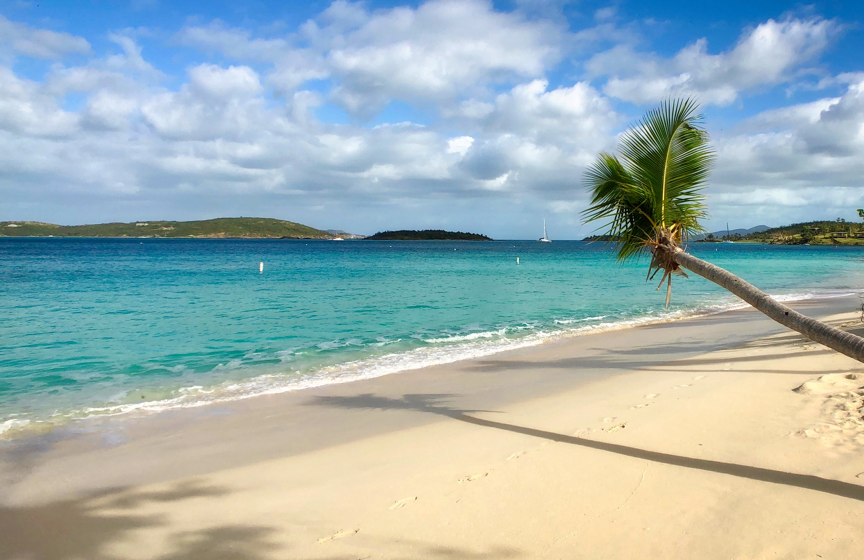 We Prefer Walking To Honeymoon On The Lind Point Trail Right From St John Escape It Is A Little Over Mile Cruz Bay