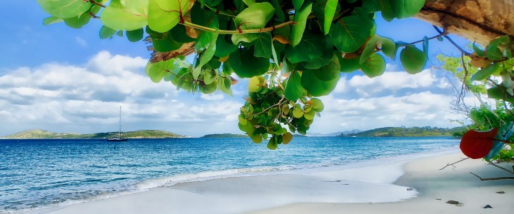 Day 6 of Your Perfect Week on St. John