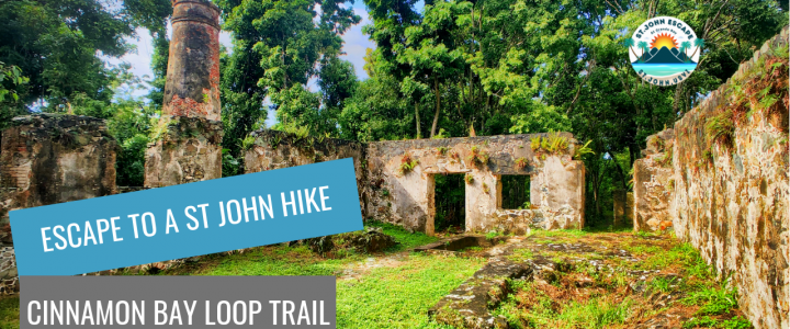 Escape to Cinnamon Bay Loop Trail – the perfect St. John hike for beginners