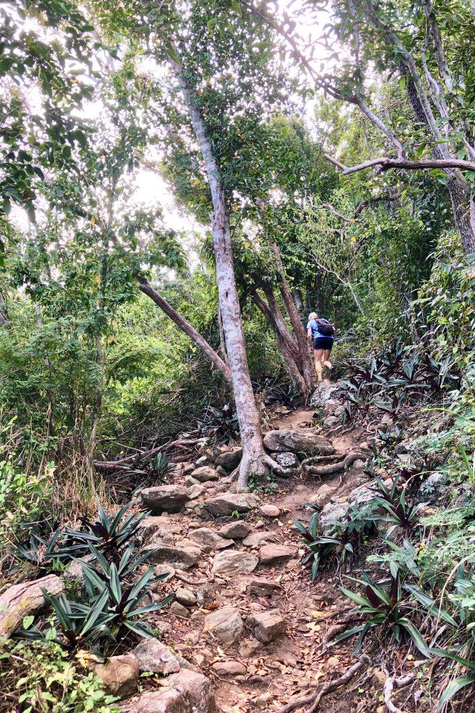 Hiking the Caneel Hill Trail St John USVI