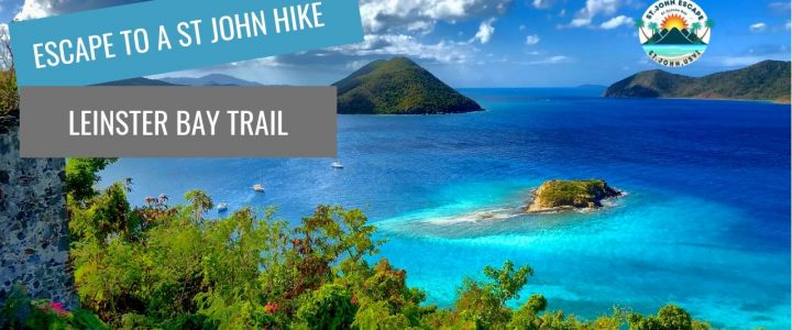 Hiking the Leinster Bay Trail