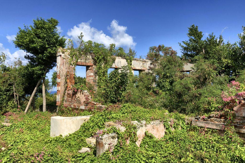 Cinnamon Bay trail St John USVI