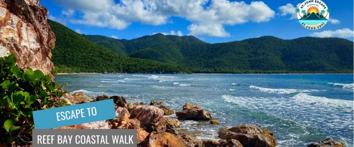 Reef Bay Coastal Walk – Our New Favorite Trail